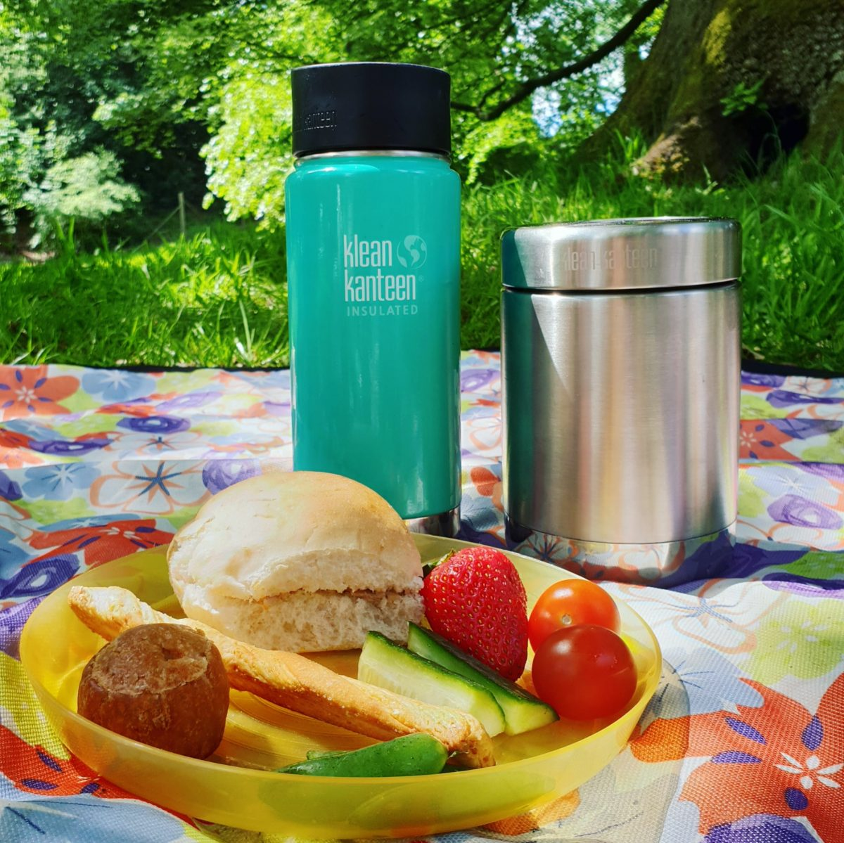 Klean Kanteen Review and Giveaway